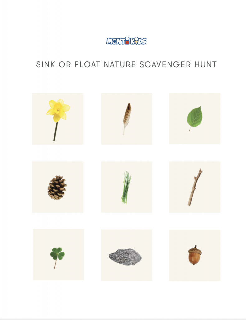 Sink or Float Activity for Toddlers